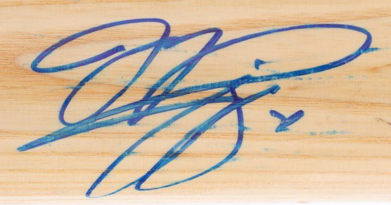 Mike Piazza Autographed Baseball Bat - Autograph Detail